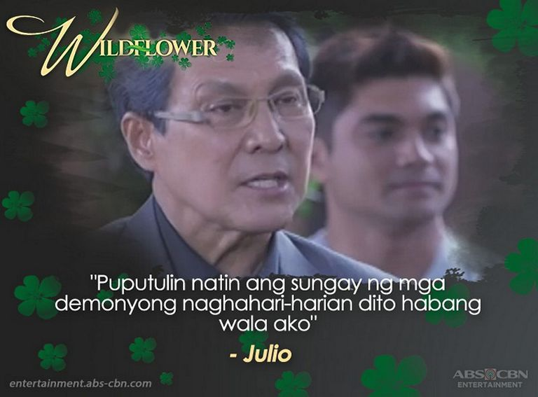 Popular Wildflower quotes that left a lasting mark on viewers